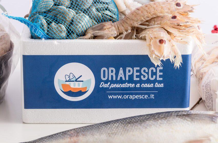 Orapesce, la startup italiana di fish delivery, chiude la raccolta con 1,15 milioni di euro